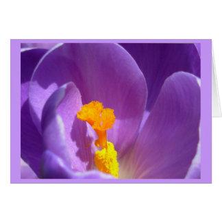 Blumen-Karten-Krokus-Blumen-kundenspezifische Gruß