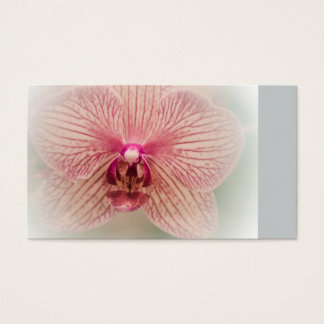 Blumen-Orchideen-Blüte Visitenkarte