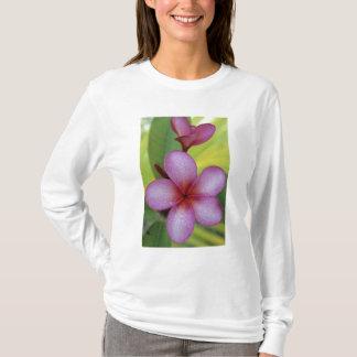 Blumen-, Plumeria-SP.), South Pacific, Niue T-Shirt
