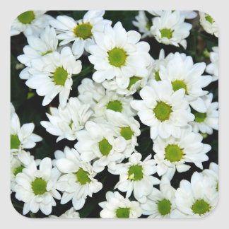 Blumen Quadratischer Aufkleber