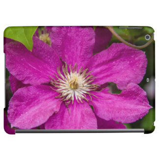 Blumen Robinettes an Apple Haus u. an der
