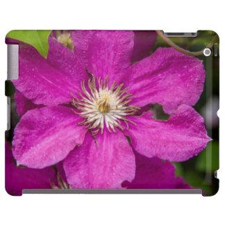 Blumen Robinettes an Apple Haus u. an der iPad Hülle