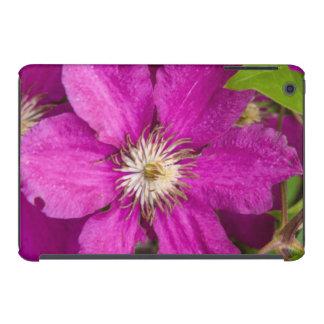 Blumen Robinettes an Apple Haus u. an der iPad Mini Retina Schale
