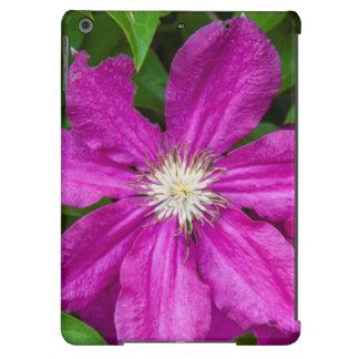 Blumen Robinettes an Apple Haus und an der iPad Air Hülle