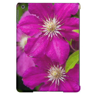 Blumen Robinettes an Apple Haus und an iPad Air Hülle