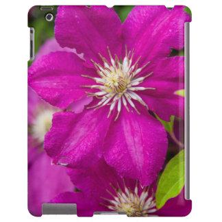 Blumen Robinettes an Apple Haus und an iPad Hülle