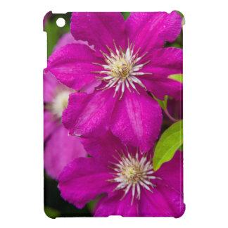 Blumen Robinettes an Apple Haus und an iPad Mini Cover