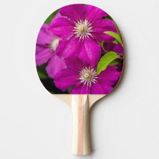 Blumen Robinettes an Apple Haus und an Tischtennis Schläger