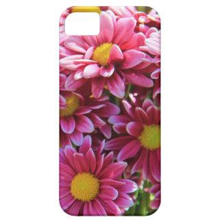 Blumen-, rosa Chrysanthemen, gelbe Mitte Etui Fürs iPhone 5