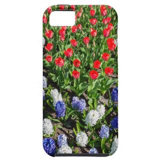 Blumen stellen mit roten blauen Tulpen und Tough iPhone 5 Hülle