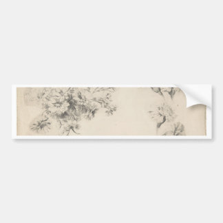 Blumen-Studie - Franzosen, 18. Jahrhundert Autoaufkleber