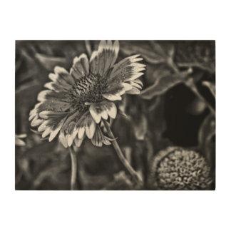 Blumen-Studie in Schwarzweiss Holzdruck