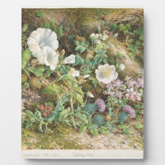 Blumen-Studie - John Jessop Hardwick Fotoplatte