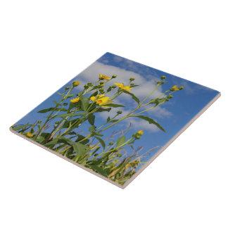 Blumen und Cornfield in Iowa-Foto Keramikfliese