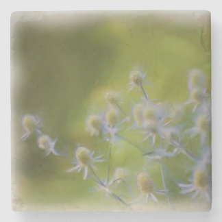 Blumen-Wildblumen Steinuntersetzer