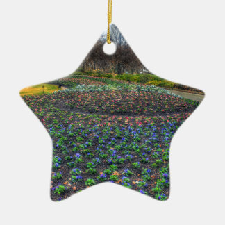 Blumenbett Dallas-Arboretums und der botanischen Keramik Stern-Ornament