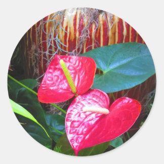 BlumenblumenFotos von Longwood Gärten Runder Aufkleber