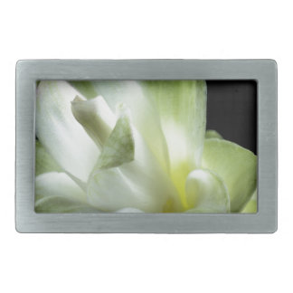 Blumenblüten bilden weißer Liebe-Kuss Rechteckige Gürtelschnallen