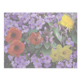 Blumenc$blumenstrauß-postkarte Postkarten