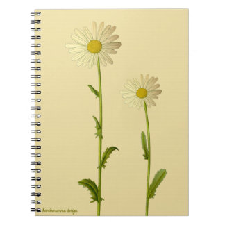 Blumenentwurf - Gänseblümchen auf beige Notizblock
