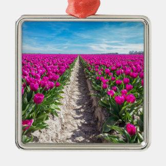Blumenfeld mit lila Tulpen und Weg Quadratisches Silberfarbenes Ornament