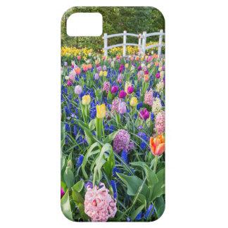 Blumenfeld mit Tulpehyazinthen und -brücke Hülle Fürs iPhone 5