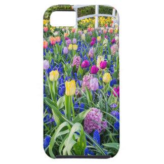 Blumenfeld mit Tulpehyazinthen und -brücke iPhone 5 Hülle