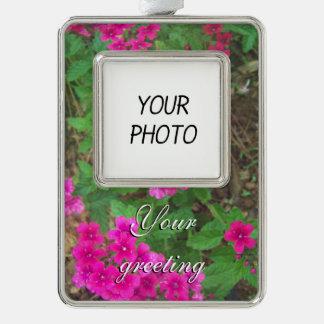 BlumenFoto der hübschen rosa Verbene-Blumen Rahmen-Ornament Silber