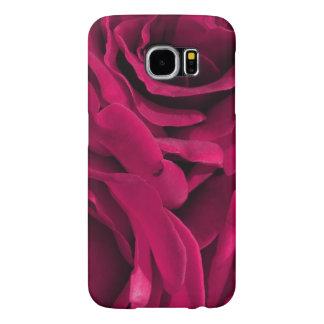 BlumenFoto der pinkfarbenen rosa Samt-Rosen