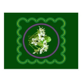 Blumengraphik der eleganten weißen Blume auf 100 Postkarte