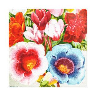 Blumenillustration glänzende 1896 leinwanddruck