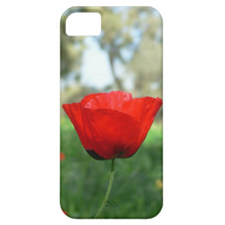 BlumeniPhone 5 Fall Hülle Fürs iPhone 5