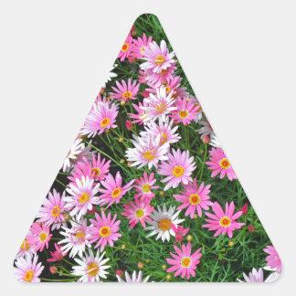 Blumenmuster der hübschen rosa Gänseblümchen Dreiecks-Aufkleber