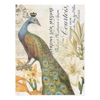 Blumenpostkarte des Vintagen französischen Pfaus Postkarte