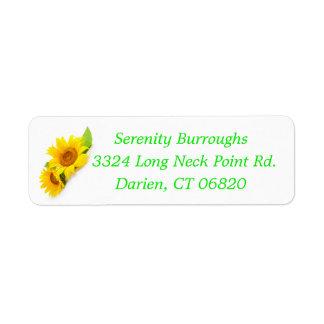 Blumensonnenblume-Gelb-Sonnenblume-Blumen