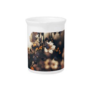 Blumensonnenuntergang-Streckensonnenlicht Krug