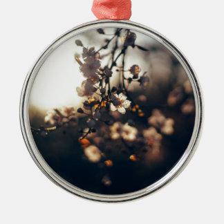 Blumensonnenuntergang-Streckensonnenlicht Silbernes Ornament