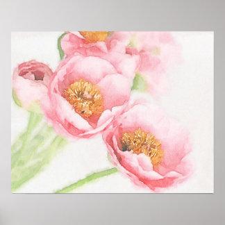 Blumenstrauß der rosa Butterblumeen Poster