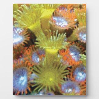 Blumenstrauß der SeeBlumen Fotoplatte