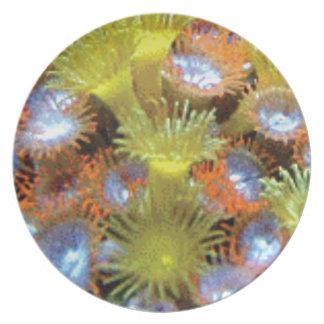 Blumenstrauß der SeeBlumen Melaminteller