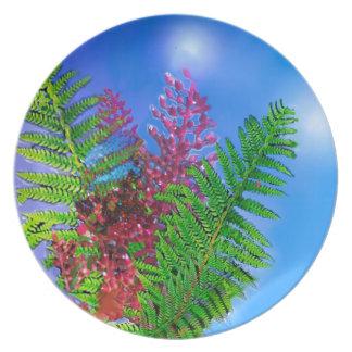 Blumenstrauß mit Farnen Teller