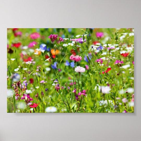 Blumenwiese Poster