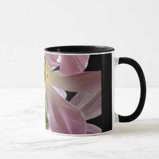 Blut-Ostern-Tulpe in der Tasse der vollen Blüte