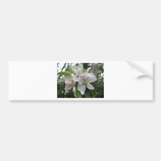 Blüte Boquet Autoaufkleber