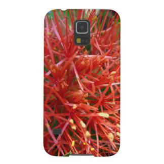 Blüte Feuerball-Lilie, Samsung Galaxy S5, Hülle