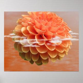 Blüten-Blumen-FriedensLiebe-Natur-Schicksal Plakat