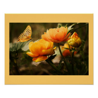 Blüten-Blumen Poster