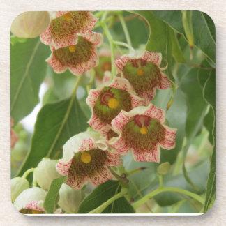 Blüten des Osterdbeerbaumes Untersetzer