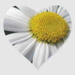 Blütenzentrum weisse Margerite Herz-Aufkleber