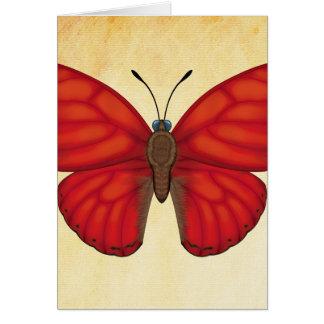 Blutroter Segelflugzeug-Schmetterling Karte